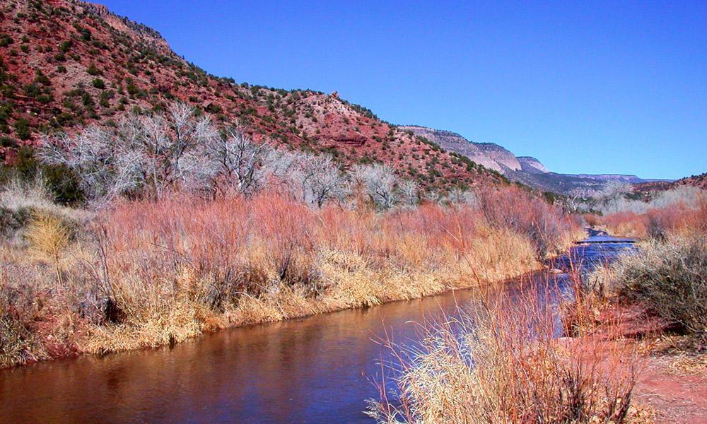 jemez_river_in_winter